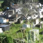 AURELINO LEAL: TERRENO DO CEMITÉRIO  DIFICULTA SUPULTAMENTO