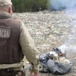POLÍCIA INCINERA MAIS DOIS MIL PÉS DE MACONHA EM SANTA INÊS