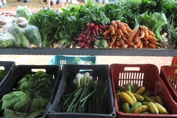 """""""Comer umas cinco frutas e legumes (por dia) faz a pessoa mais feliz"""""""