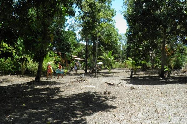 Ampla área com diversas árvores tornam o lugar aconchegante e agradável