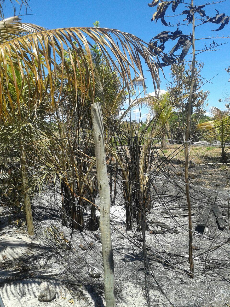O fogo foi colocado irresponsavelmente por um morador da Alemeda Itabuna