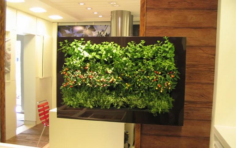 Espaço não é mais desculpa: engenheira agrônoma comenta que é possível utilizar pequenos vasos para o cultivo de plantas.