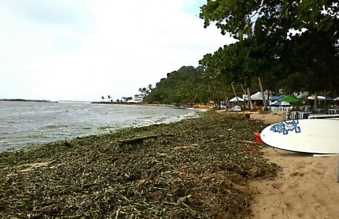 A praia da Concha é a mais atingida