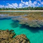 NEGÓCIOS: MARAÚ VAI SER 1ª REGIÃO AUTOSSUFICIENTE DE ENERGIA NO BRASIL