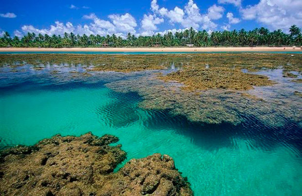 Maraú, na Bahia, vai ser a primeira região a viver da energia que produz (Foto: Divulgação)