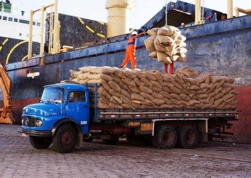 Produtores querem barrar importação de cacau por causa de prejuízos (Foto Luiz Alves).