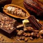 CHOCOLATE AMARGO COM 85% DE CACAU É BENÉFICO AO CORAÇÃO, DIZ PESQUISA