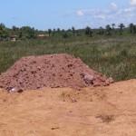 MARAÚ: ASSOCIAÇÃO DENUNCIA CRIME AMBIENTAL EM ALGODÕES
