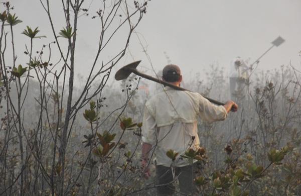 """Membros da Comunidade """"Eco Vila Piracanga"""" tentaram debelar o fogo"""