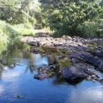 TRAVESSÃO: RIO ORICÓ PEDE SOCORRO