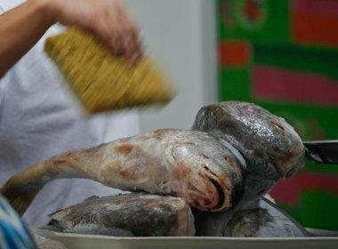 Rodrigues sugeriu observar a origem e o manuseio dos pescados