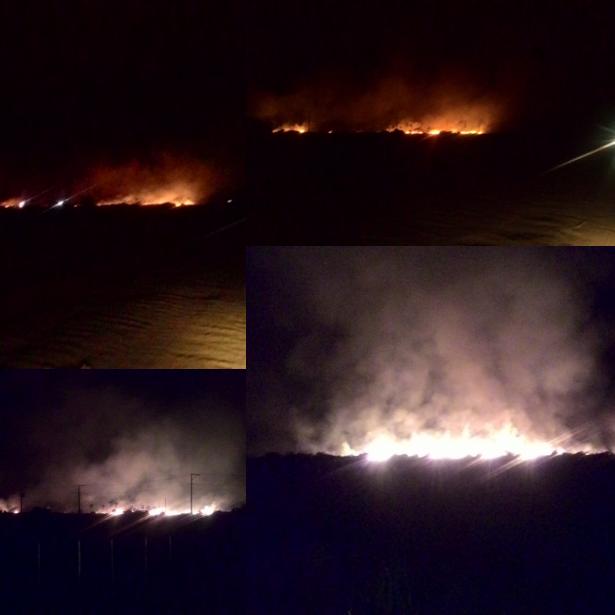 O incêndio atingiu grande área de restinga (Foto: Barra Grande News)
