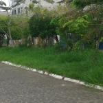 UBAITABA: MATAGAL TOMA CONTA DA  AV.  ORLANDO MAGALHÃES NO CENTRO DA CIDADE