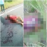 CAMAMU: ACIDENTE DE MOTO DEIXA  DOIS MORTOS  NA RODOVIA BARCELO DO SUL/BA-001