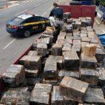 POLÍCIA RODOVIÁRIA APREENDE  3.250kg DE MACONHA EM JEQUIÉ