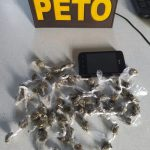 UBATÃ: POLICIAIS DA 61ª  CIA  REALIZAM APREENSÃO DROGAS